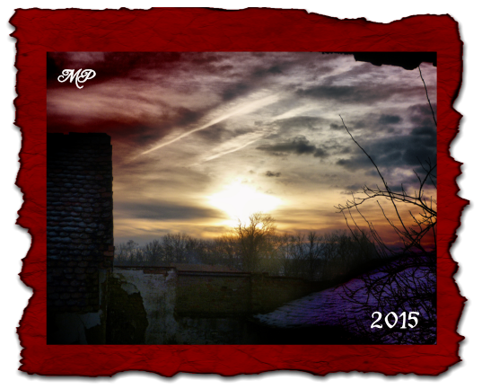 2015_5