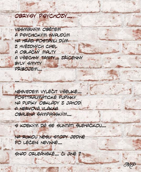 Obrysy_psychozy_text